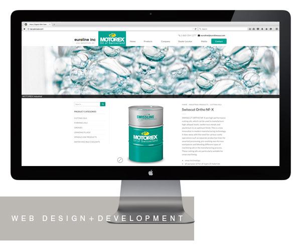 euroline-inc-new-milford-website-design-development